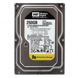HDD жесткий диск Western Digital WD2503ABYX
