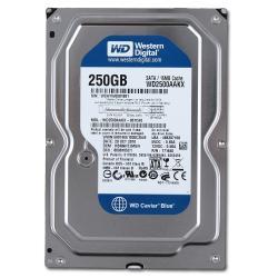 HDD жесткий диск Western Digital WD2500AAKX